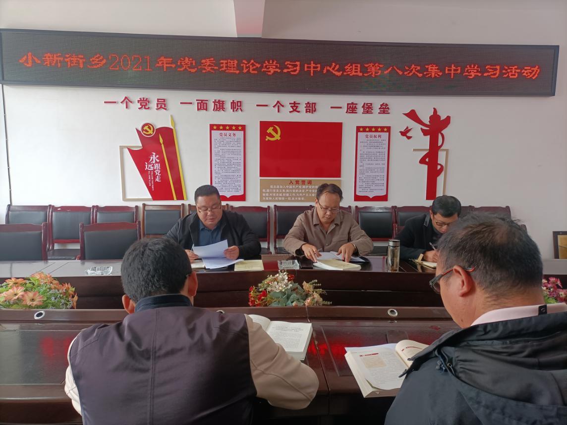 小新街乡举行党委理论学习中心组第八次集中学习活动